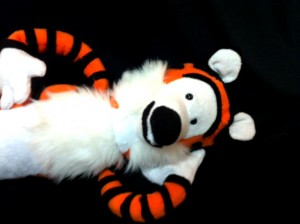Hobbes